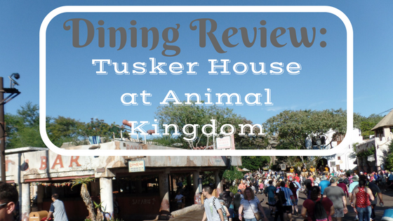 Dining Review: Tusker House in Disney's Animal Kingdom