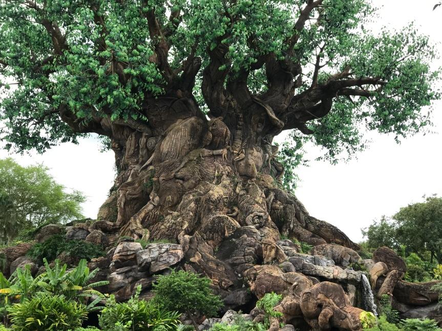 The Skinny on the Walt Disney World ThemeParks